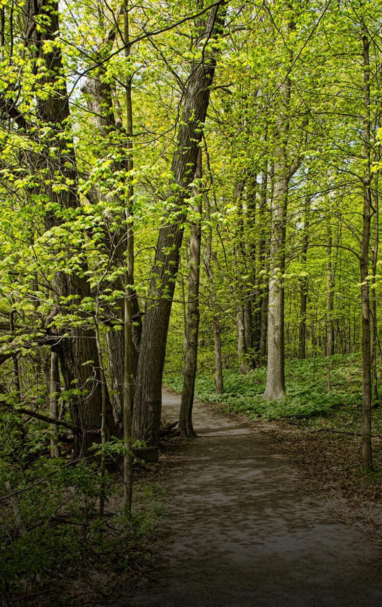 Bronte-Creek Park
